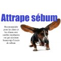 Attrape sébum